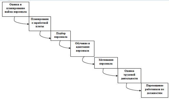 Этапы управления персоналом организации